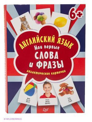 Английский язык. Мои первые слова и фразы. Дидактические карточки 60 шт. 6+ ПИТЕР. Цвет: красный