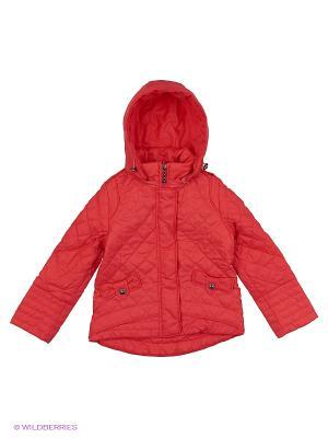 Куртка Пралеска. Цвет: коралловый