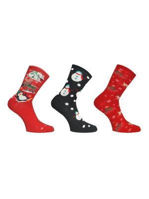 Носки, 3 пары Master Socks. Цвет: темно-серый, бордовый