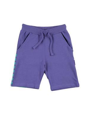 Шорты KOGANKIDS. Цвет: фиолетовый