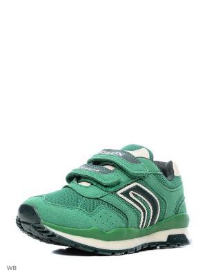 Кроссовки GEOX. Цвет: зеленый