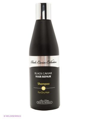 Восстанавливающий шампунь для сухих волос Black Caviar Collection, 400 мл Mon Platin DSM. Цвет: черный