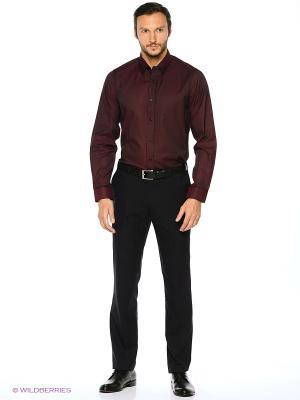 Рубашка KARFLORENS. Цвет: темно-бордовый