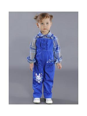 Комплект одежды Fleur de Vie. Цвет: синий