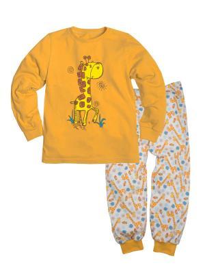 Пижама ДД Машук. Цвет: желтый