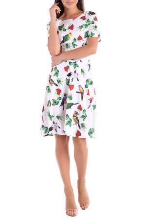 Платье Magnet. Цвет: мультиколор