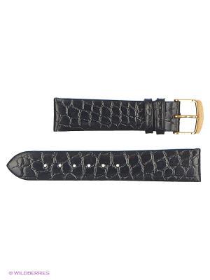 Ремень для часов, им.крокодила, лаковый J.A. Willson. Цвет: черный