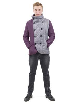 Куртка DOCTOR E. Цвет: сливовый, серый