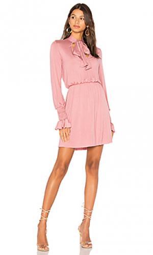 Платье camden Clayton. Цвет: розовый