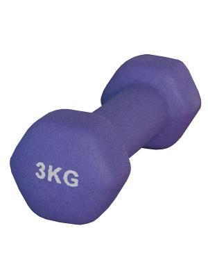 Гантель неопреновая 3 кг Atemi, AD-01-3 Atemi. Цвет: фиолетовый