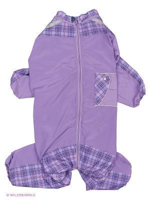 Дождевик холодный (Немецкая Овчарка), девочка ТУЗИК. Цвет: фиолетовый
