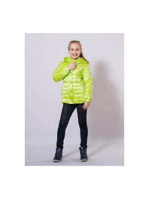 Куртка SAIMA. Цвет: салатовый