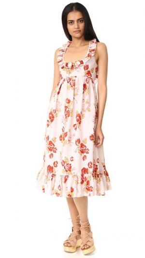 Платье Amelie Jill Stuart. Цвет: принт wallpaper