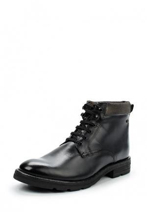 Ботинки Base London. Цвет: черный