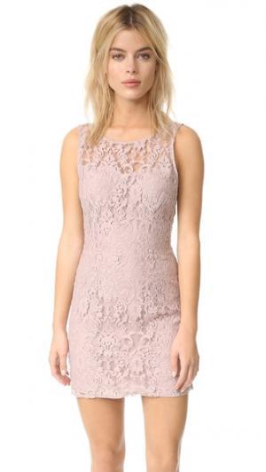 Кружевное платье без рукавов ssaly BB Dakota. Цвет: шампанское