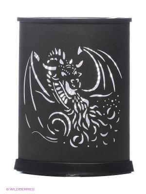 EXPETRO Лайткрытка овальная с драконом Экспетро. Цвет: черный