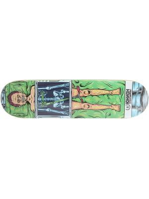 Профессиональный скейтборд Scoot, размер 8,25x32, конкейв Medium Юнион скейтборды. Цвет: черный, зеленый, светло-коричневый