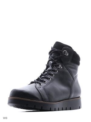 Ботинки Bottero. Цвет: черный