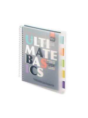 Бизнес-блокнот-2 а4-, 150 л. гр., разделители, пластиковая обл. ultimate basics, черный Альт. Цвет: черный