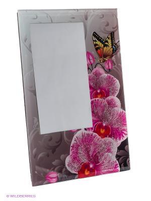 Фоторамка butterfly queen VELD-CO. Цвет: серый, розовый