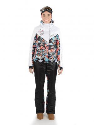 Куртка Stayer. Цвет: черный, белый, голубой