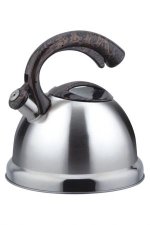 Чайник металлический 3 л Bekker. Цвет: серебристый