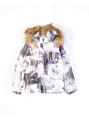 Куртка INCITY. Цвет: белый, черный, зеленый