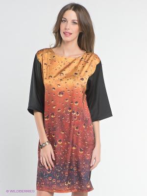 Платье DOCTOR E. Цвет: черный, оранжевый, терракотовый