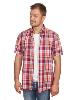 Рубашка Poplin McNeal. Цвет: бордовый, рыжий