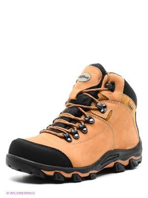 Ботинки Shoiberg. Цвет: коричневый, черный
