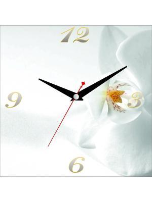 Картина стеновая с часовым механизмом ДСТ. Цвет: белый