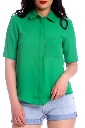 Блуза Emma Monti. Цвет: green