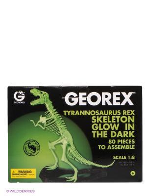Сборная модель  Скелет Динозавра Т-Рекса Geoworld. Цвет: зеленый, черный