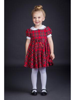 Платье Эдинбург Alisia Fiori