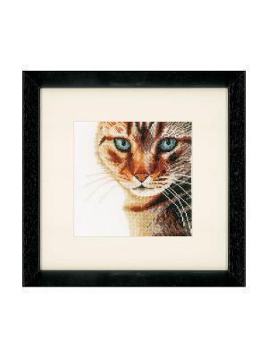 Набор для вышивания Kat /Кошка/ 17*17см Vervaco. Цвет: коричневый, светло-коричневый, белый, черный
