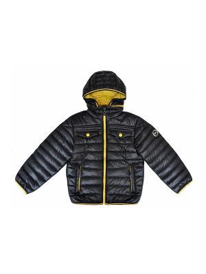 Куртка BORELLI. Цвет: черный
