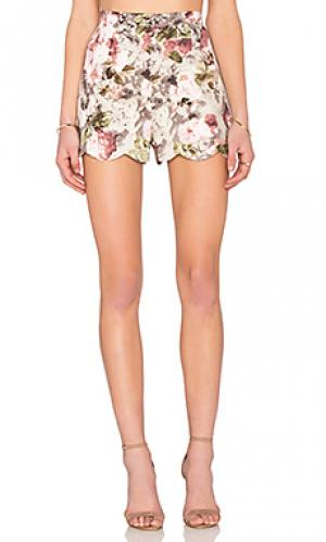 Шорты scallop Lucca Couture. Цвет: красный