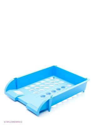 Лоток горизонтальный  пластиковый, синий Centrum. Цвет: голубой