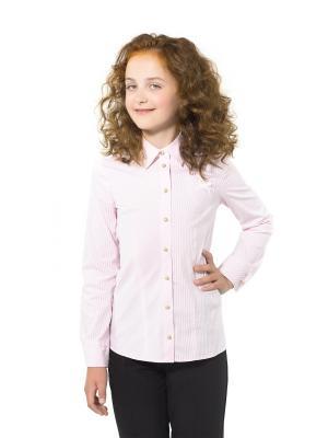 Блузка BLAUZ. Цвет: розовый