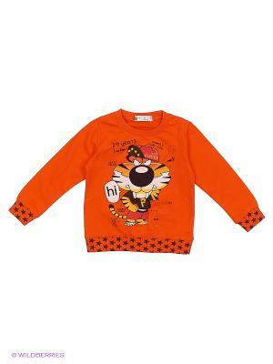 Свитшот Sago Kids i Ant Domain. Цвет: оранжевый