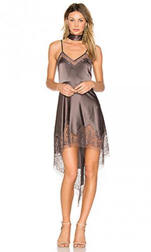 Платье с кружевной вставкой Michelle Mason. Цвет: фиолетовый