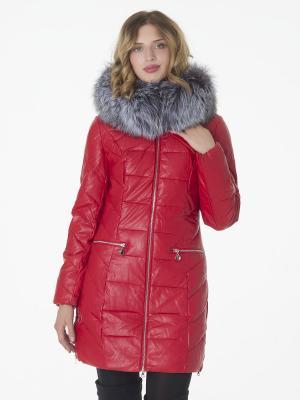 Куртка CATTAIL WILLOW. Цвет: красный