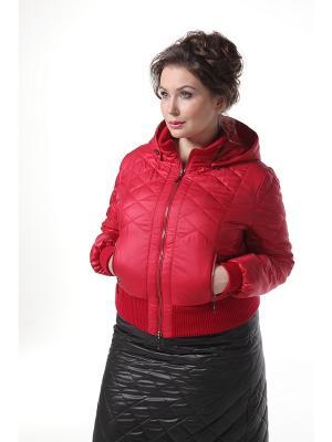 Куртка DizzyWay. Цвет: красный