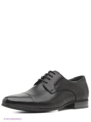 Ботинки Daniela Bernardi. Цвет: черный