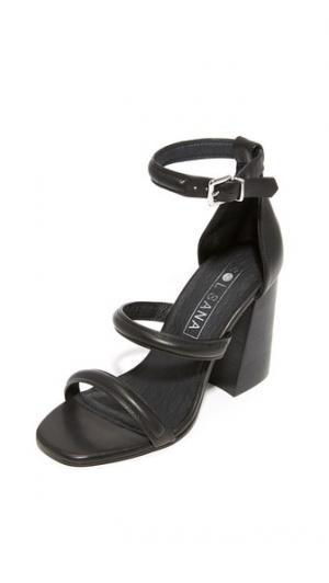 Сандалии на каблуках Aubrey Sol Sana. Цвет: черный/черный