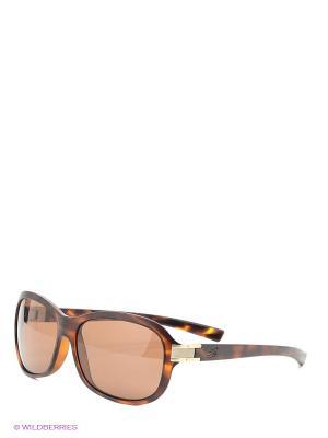 Солнцезащитные очки Serengeti. Цвет: оранжевый