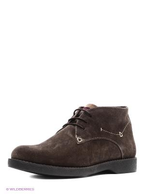 Ботинки Dino Ricci. Цвет: коричневый, серый