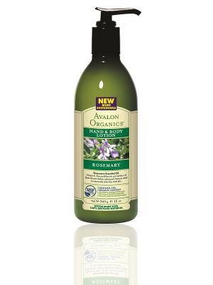 Лосьон для рук и тела с маслом розмарина, 360 мл Avalon Organics. Цвет: белый