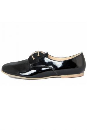 Boots PAOLA FERRI. Цвет: black