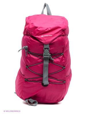 Рюкзак Alpine PRO. Цвет: малиновый